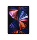 "Apple iPad Pro 12.9"" Wi-Fi + Cellular 128 GB Spacegrau 5. Gen. // NEU"